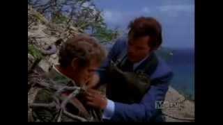 Hawaii Five-0: Steve & Danno