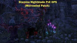 The Elder Scrolls Online; In Depth Stamina Nightblade DPS (Morrowind Patch)