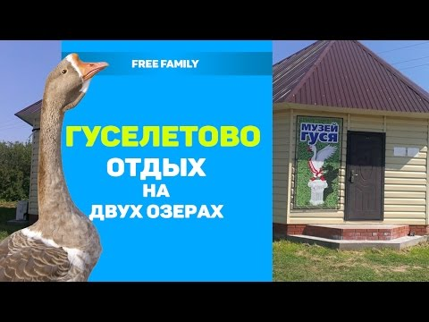Соленое озеро В ГУСЕЛЕТОВО / ГУСЕЛЕТОВСКИЕ ПЛЕСЫ (отдых в Алтайском крае)
