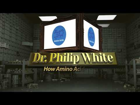 How Amino Acids Work By Dr. White