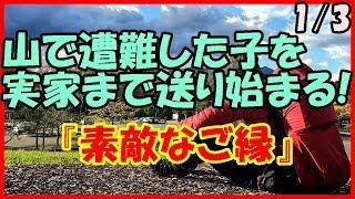 【感動する話 出会い】山で遭難した子を実家まで送り始まる!『素敵なご縁』1/3【馴れ初め いい話】