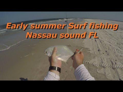 Early Summer Surf Fishing Nassau Sound FL