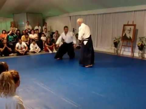 Aikido jard n japones 2013 asociaci n regional de aikido for Jardin 935 bahia blanca
