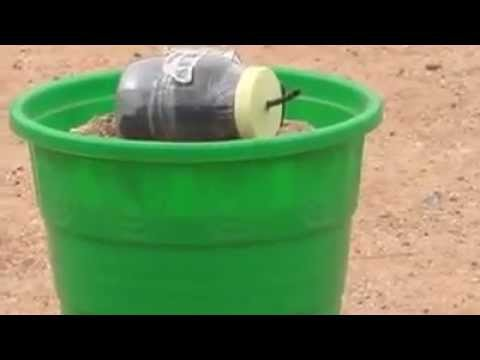 Bomb Found at BHEL township , Ranipet