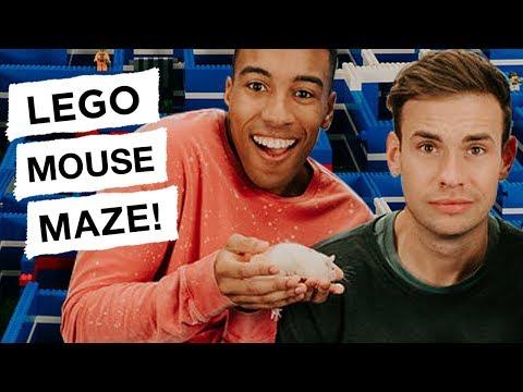 LEGO Mouse Maze - REBRICKULOUS