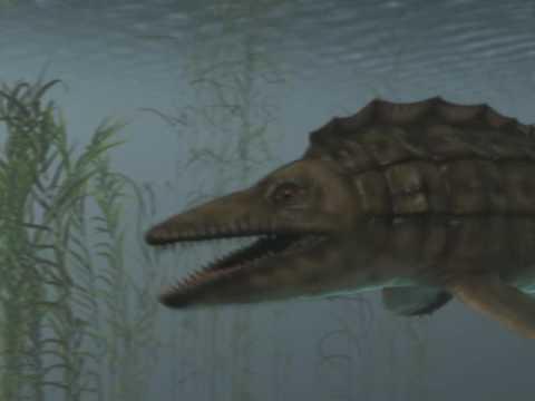 platecarpus - ancient marine monster