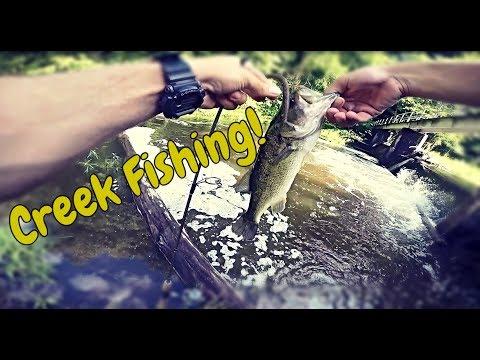 Breckenridge Reservoir Quantico VA Fishing
