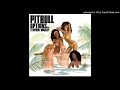 Pitbull - Options (Dj Twitch Reggae Remix)(Feat. Stephen Marley & Craig David)