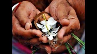 Tarpan and Shanti Puja - तर्पण एवं  शांति पूजा (श्राद्ध पूजा व नारायण नागबलि आदि )