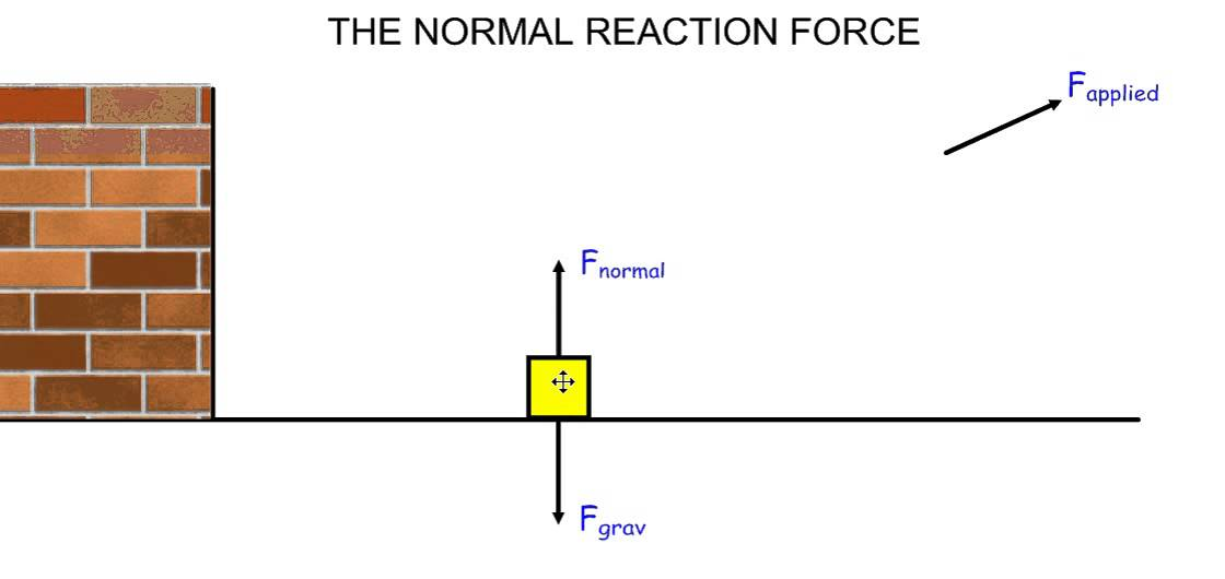 What Reaction Force From A Frisbee - K TO 12 GRADE 7 LEARNING MODULE