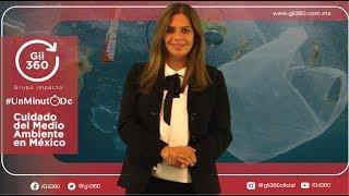 Alianza México sin Plastico. MEDIO AMBIENTE MEXICO