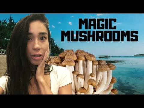 MAGIC MUSHROOMS ISLAND (INDONESIA)
