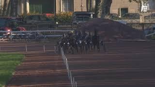 Vidéo de la course PMU PRIX DES PRIMEVERES