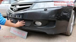 Защита радиатора Honda Accord VII (Рестайлинг) 2006-2008г.в. (Черный) - strelka11.ru