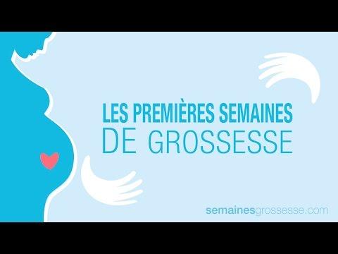 Les premières semaines de grossesse | La grossesse semaine par semaine