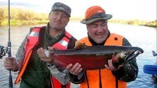 Рыбалка на Камчатке (осень 2011) HD(Наверно я не ошибусь, если скажу, что каждый рыбак хоть раз в жизни мечтает порыбачить в стране дикого лосос..., 2012-04-20T16:53:24.000Z)