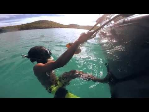 Gumption Tour of Necker | British Virgin Islands