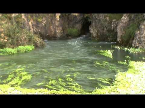 nascente do rio Nabão Fonte grande formigais
