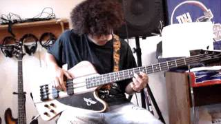 The Pink Panther[Bass Cover With Angry Effects]