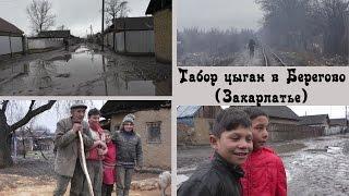 Табор цыган в Берегово (цыгане без ретуши) | Места и люди