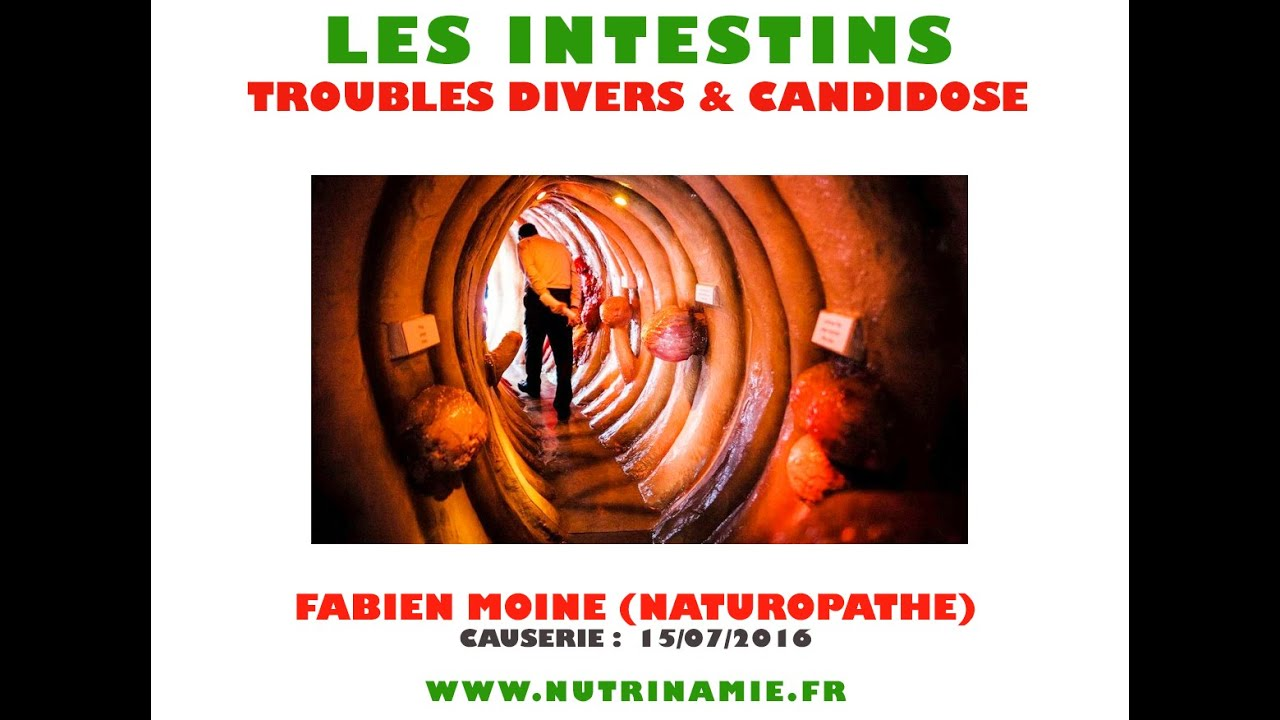 Intestins : troubles et candidose (Fabien Moine)