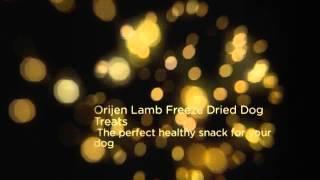 Orijen Lamb Freeze Dried Dog Treats Reviews - Best Dog Food