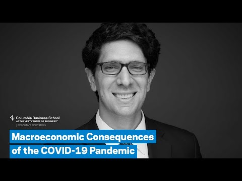 Macroeconomic Consequences of the COVID 19 Pandemic
