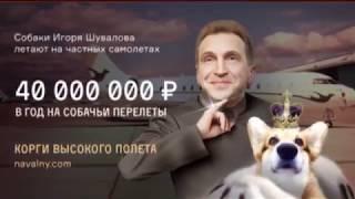 Закон об изоляции российского интернета: как в РФ ''закручивают гайки'' - Гражданская оборона