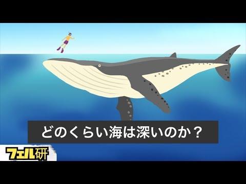 【衝撃】どのくらい海は深いのか?