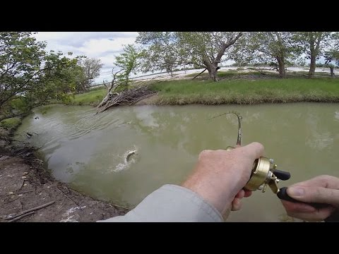 Small Creek Fishing For Barramundi