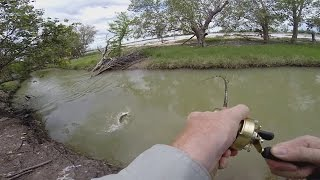 Small Creek Fishing for Barramundi