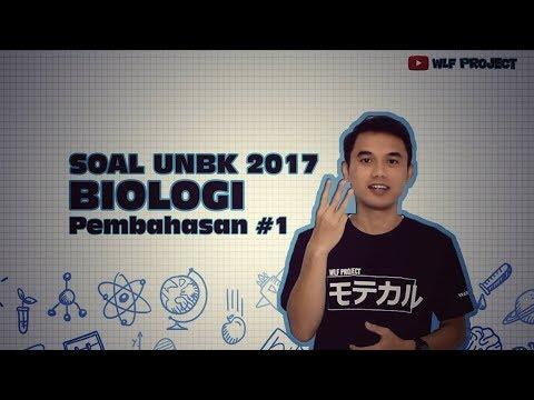 VIDEO PEMBAHASAN SOAL UNBK BIOLOGI 2017