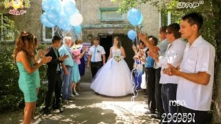 украшение зала на свадьбу шарами фото цены Алматы