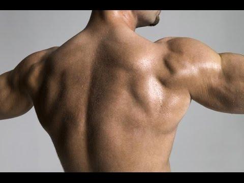 Мышцы от Арнольда Шварценеггера. Как убрать живот.