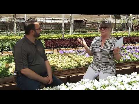 Community Producers - City Greenhouse & Flower Beds