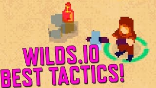 Wilds.IO! New Agar.io game, Best Strategy No Hack Gameplay