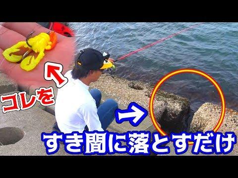 超簡単お手軽フィッシングで陸から5種類の魚を釣る!