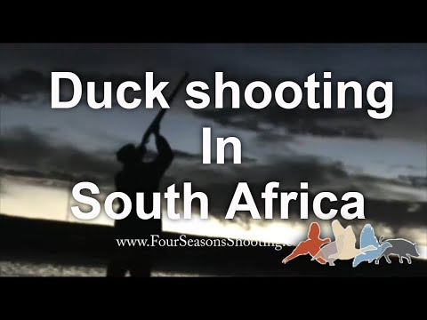 Wild duck and Goose Flight South Africa £175 per day March to August 2018