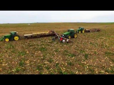 Winter Squash Harvest Video