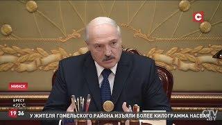 Лукашенко: Отвратительное отношение к лесу! Совещание у Президента