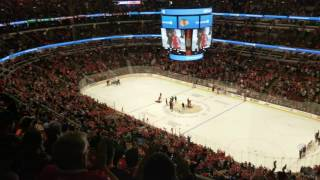 Cubs : David Grandpa Ross shoot the puck at Chicago Blackhawks