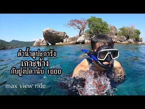 EP50 ดำน้ำเกาะช้าง ดูปะการัง กับฝูงปลานับพันตัว snorkeling koh chang