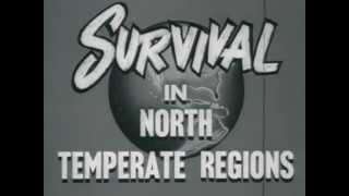 How to Survive off the Land - Temperate Climate Training - US NAVY -1955 [Original FULL VERSION]