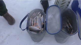 ТАКОЕ У МЕНЯ ВПЕРВЫЕ САЗАН НА ЗИМНЮЮ УДОЧКУ зимняя рыбалка с ночевкой