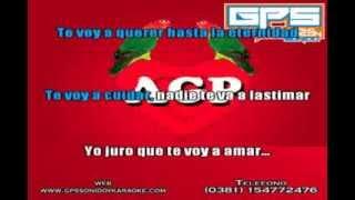 Agapornis - Hasta el final cumbia Karaoke (Guillermo Perdigon Sonido)