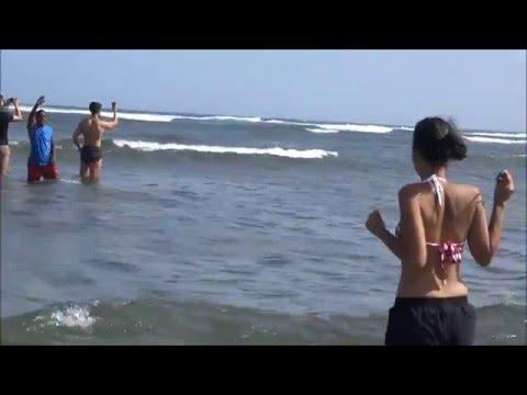 Turistas passeiam com tubarões na Ilha do Sal!