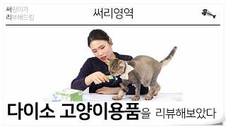 수리영역 외전 '쉬는시간'. 서리영역! …