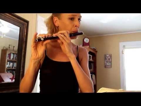 TMEA-2013 Piccolo (flute) Etude #2 (Boehm)