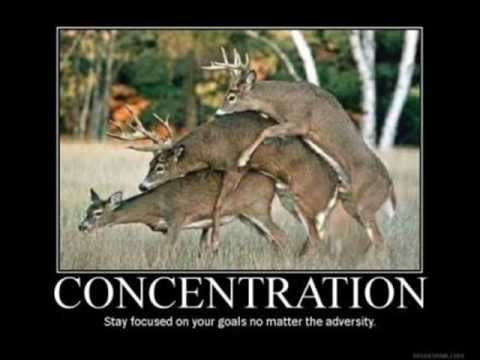 Demotivational Posters 2 Youtube
