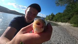 рыбалка 2020 рыбалка на озере рыбалка в краснодарском крае озеро абрау дюрсо краснодарский край